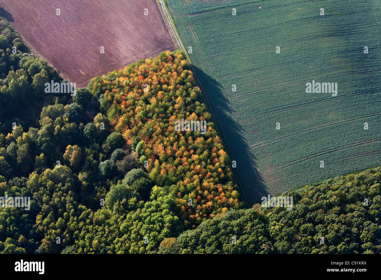 Aerial photo of diverse land useage, agricultural forest and fields, Lower Saxony, Germany - Stock Image