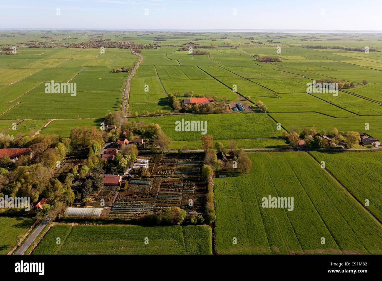 Aerial view of a market garden, farm in Lower Saxony, Germany - Stock Image