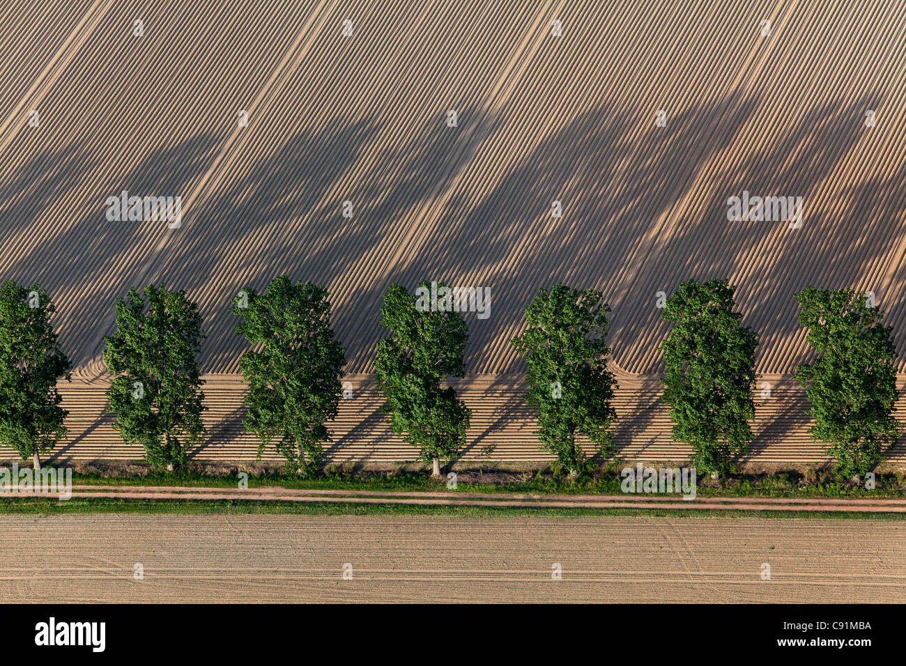 Aerial view of farm track parallel to trees, ploughmans furrows, patterns in the field, Lower Saxony, Germany - Stock Image