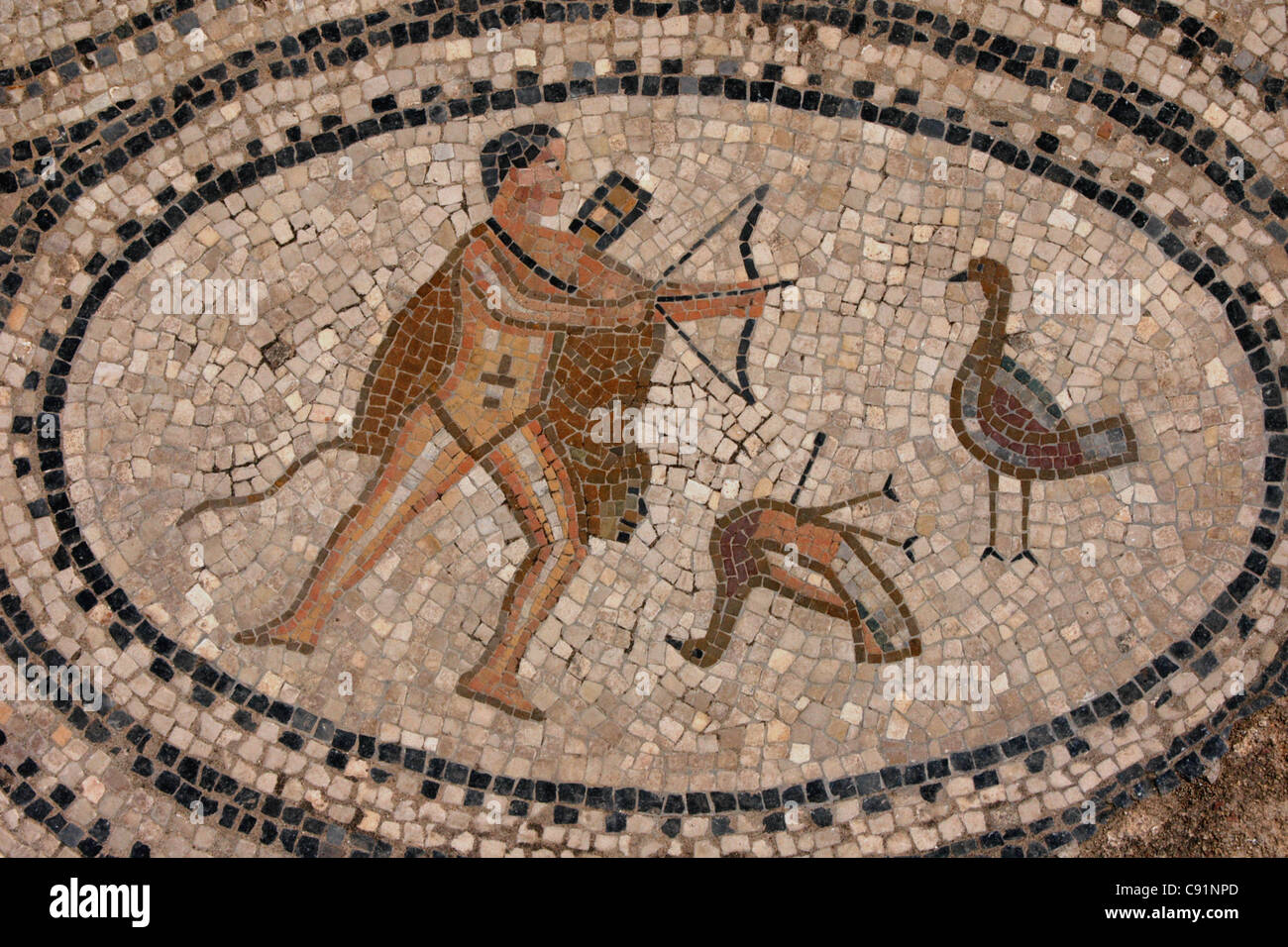 Hercules and the Stymphalian birds. Roman mosaic from the House of the Labors of Hercules in Volubilis, Morocco. Stock Photo