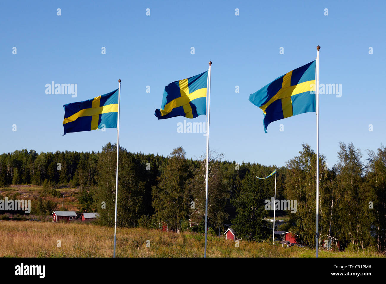 Swedish flags over rural landscape - Stock Image