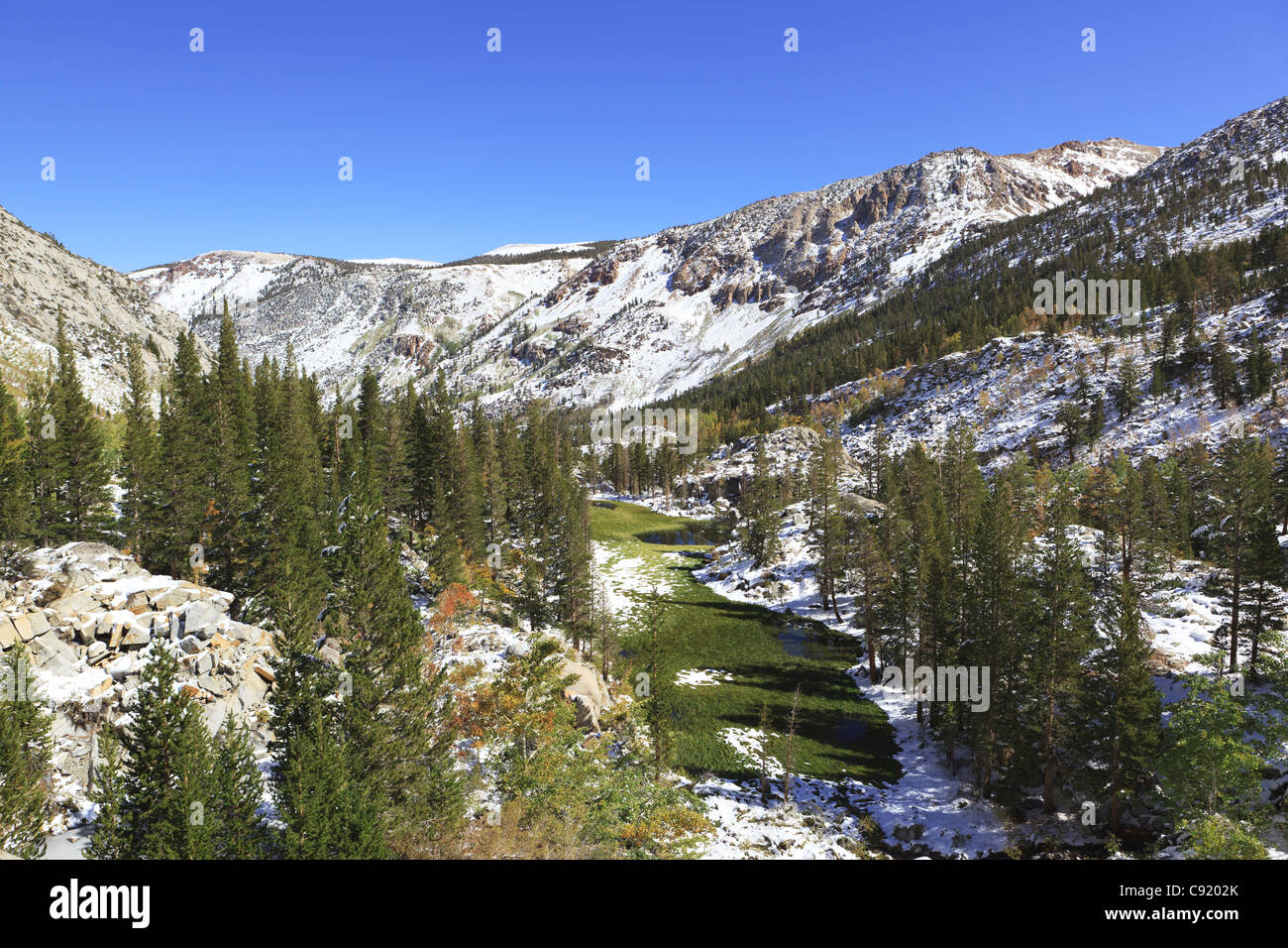 Early autumn snow in an alpine valley in Sierra Nevada mountains, California - Stock Image