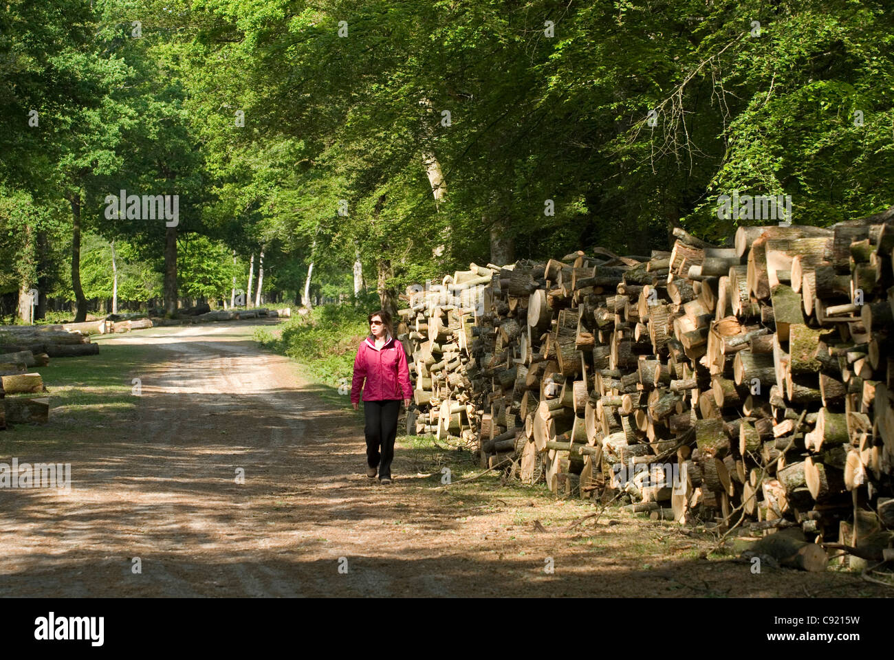 A woman walking past stacks of felled timber at Aldridge Hill Stock ...