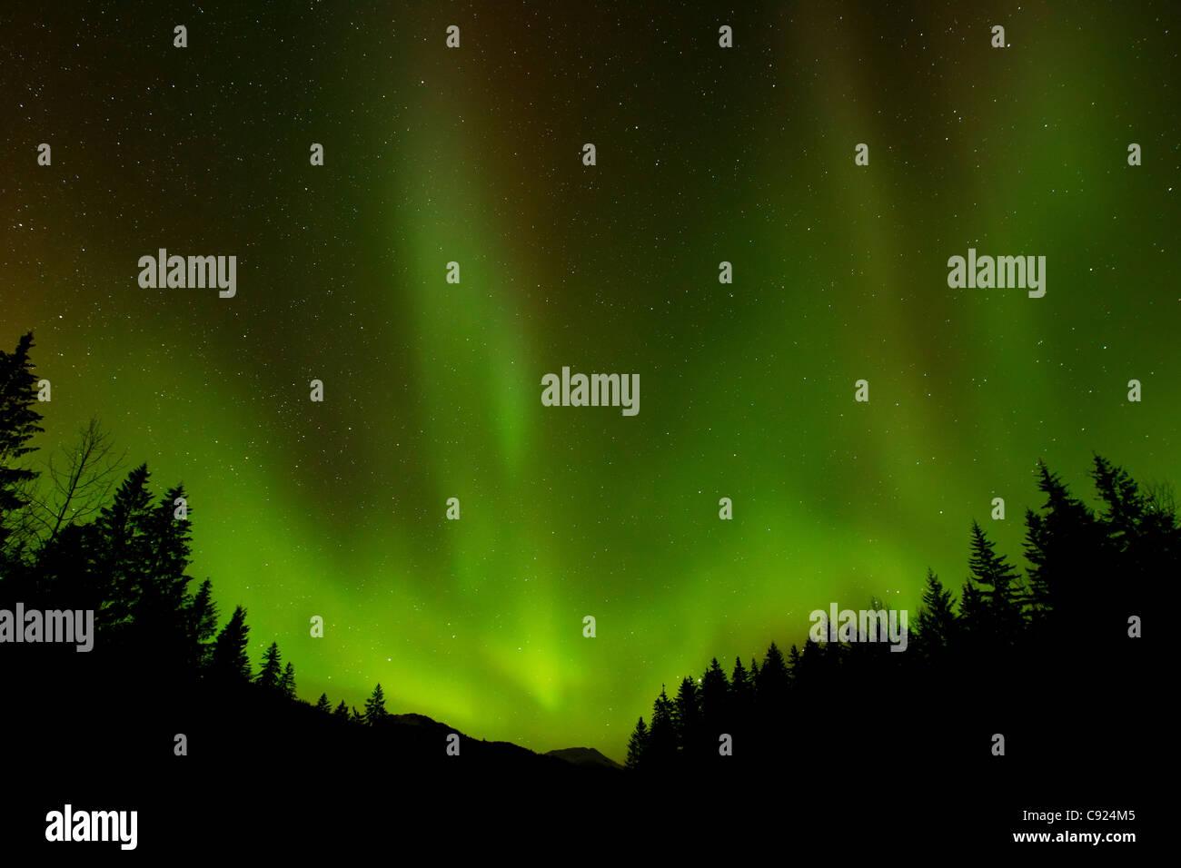 Green northern lights over Tongass National Forest, near Juneau, Southeast Alaska, Winter Stock Photo