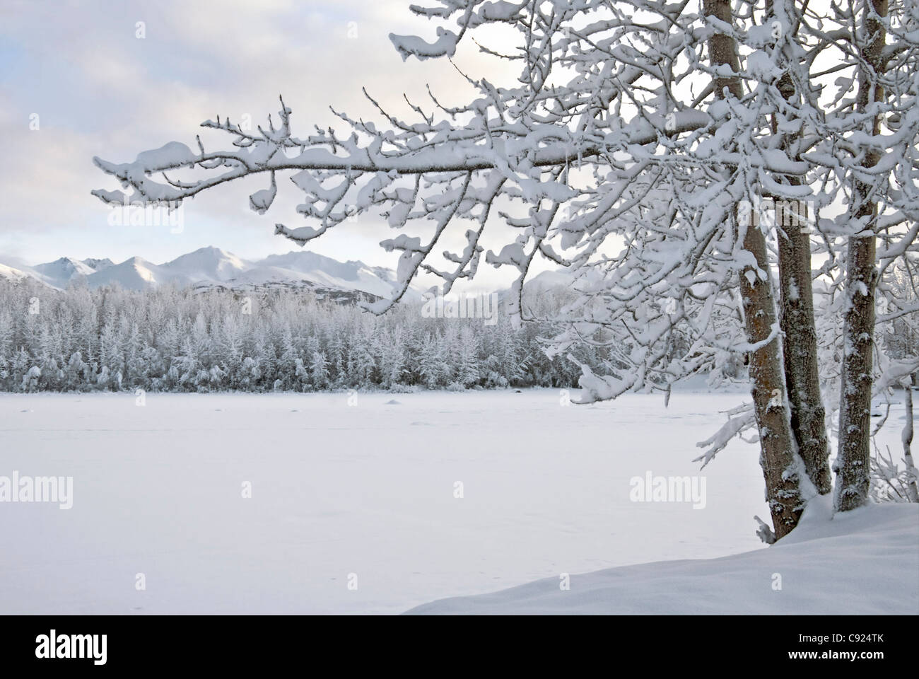 View of snow covered Cheney Lake on a winter afternoon in East Anchorage with Chugach Mountains in the background, - Stock Image