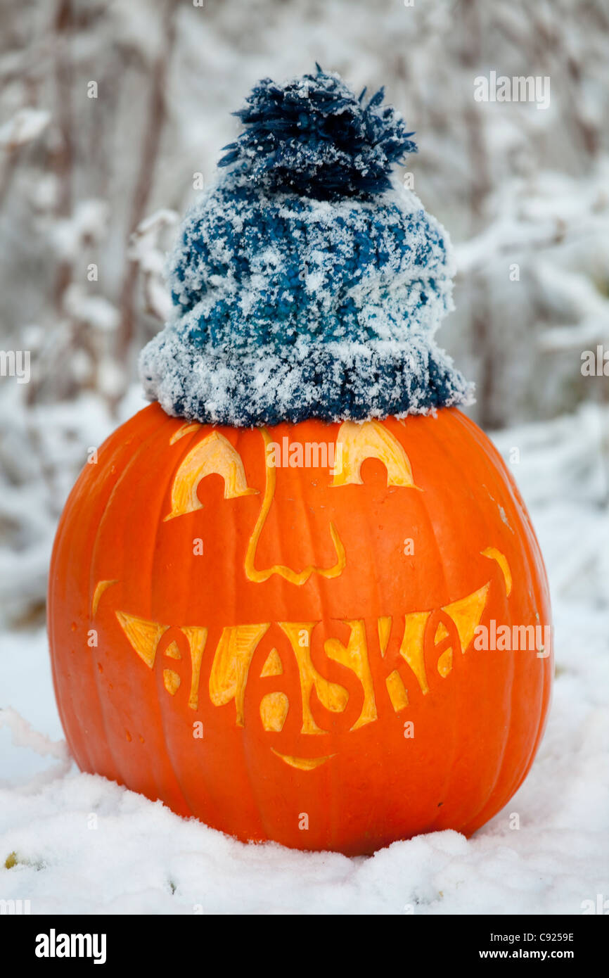 Close up of a carved pumpkin with the word Alaska carved as teeth in a snowy scene and wearing a knit stocking cap, - Stock Image