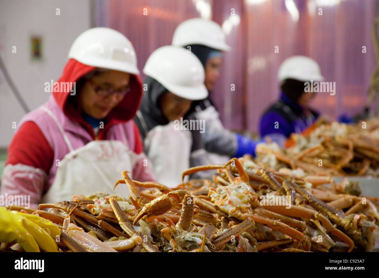 When Is Festival Foods New London Seafood Sale