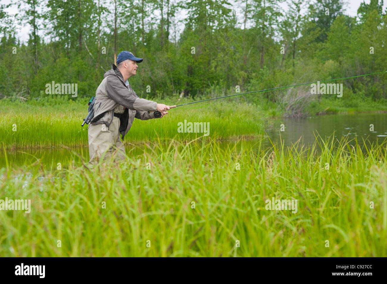 Man fly fishing for King salmon in a backcountry river, Southcentral Alaska, Summer - Stock Image