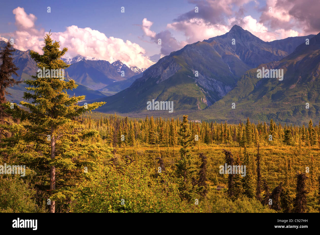 View of the Chugach Mountains taken from the Glenn Highway, Southcentral Alaska, Summer - Stock Image