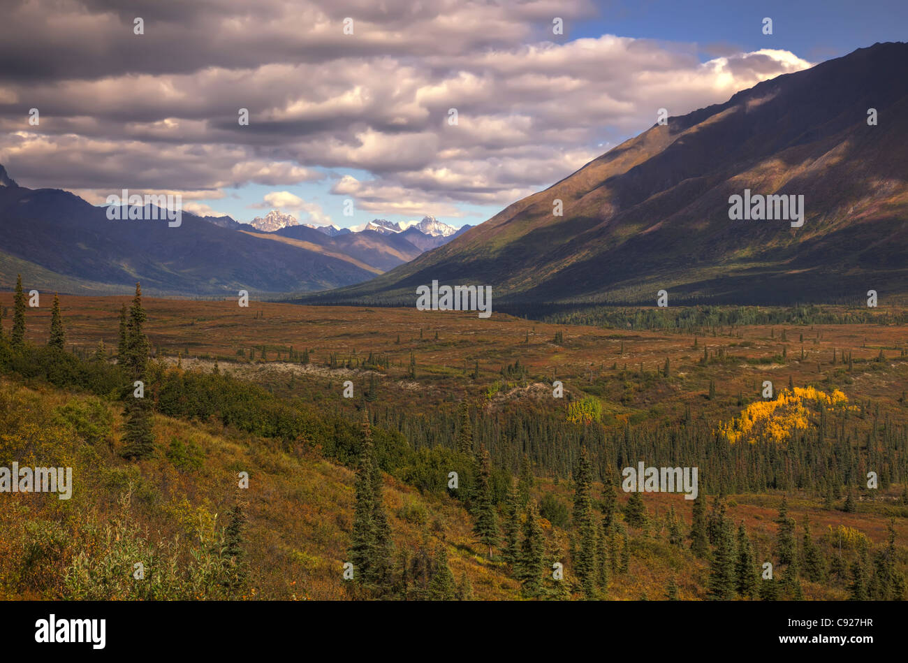 View of the Alaska Range from above Rainy Pass Lodge near Puntilla Lake. - Stock Image