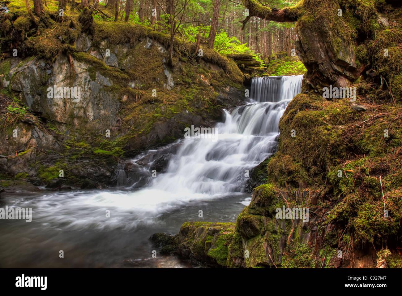 Waterfall along Mt. Jumbo trail on Douglas Island near Juneau, Southeast Alaska, Summer. HDR - Stock Image