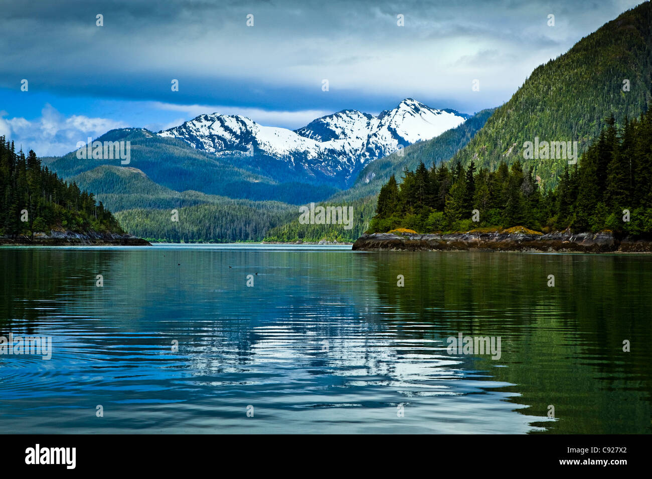 Landscape of Scenery Cove, Thomas Bay, Petersburg, Southeast Alaska, Summer Stock Photo