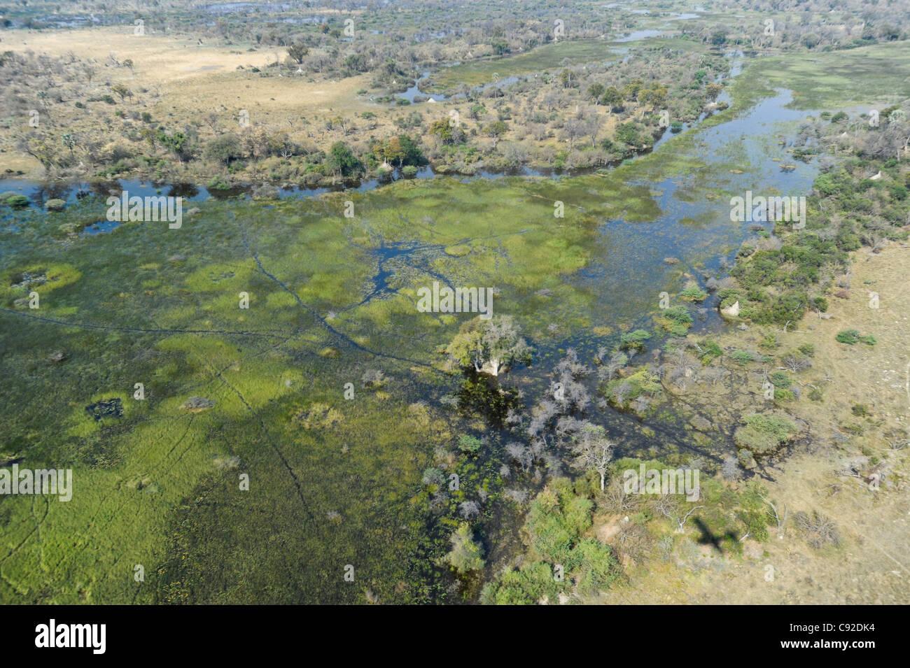Aerial of Okavango Delta - Stock Image