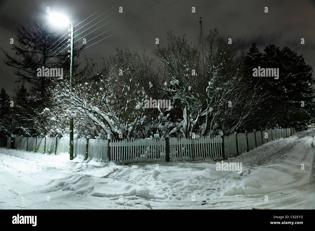 Snow covered picket fence and trees - Stock Image