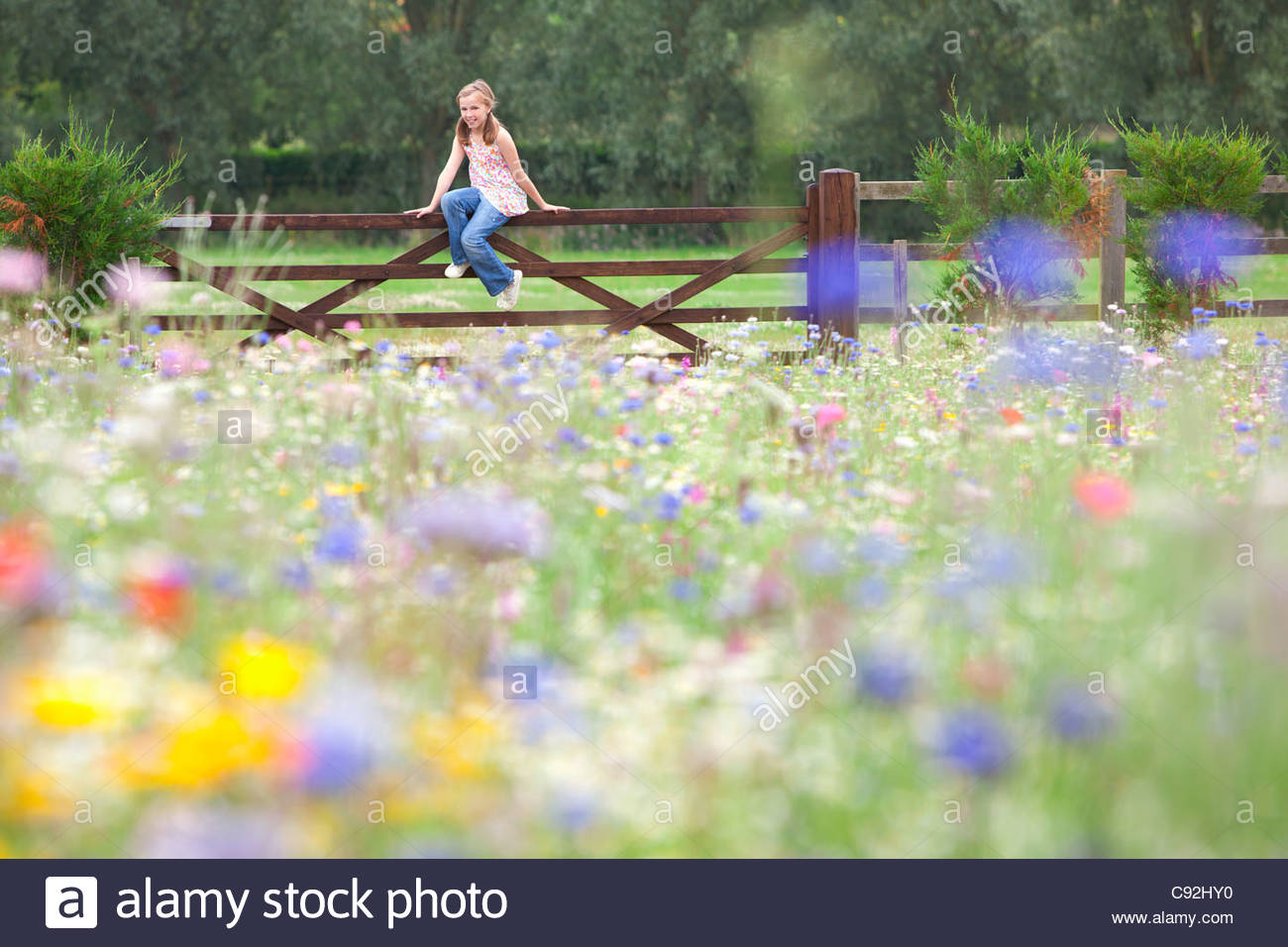 Girl sitting on fence in wildflower field Stock Photo