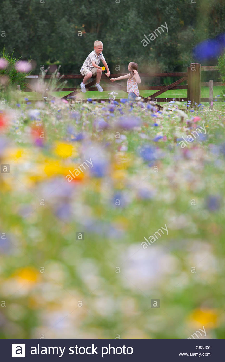 Boy and girl at fence in wildflower field Stock Photo