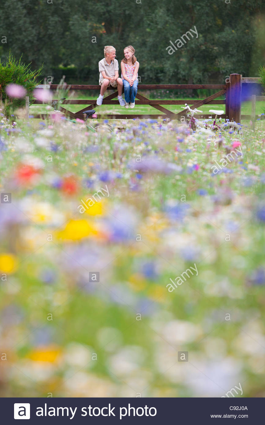 Boy and girl sitting on fence in wildflower field Stock Photo