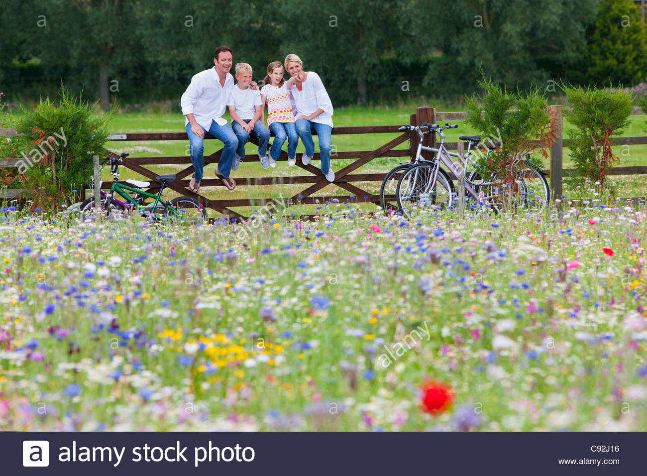 Family with bicycles sitting on fence in wildflower field Stock Photo