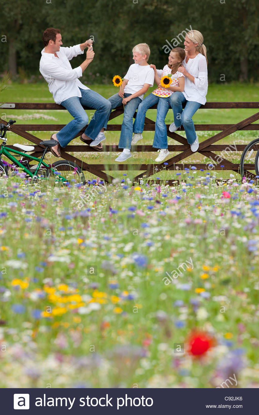 Man taking photograph of family on fence in wildflower field Stock Photo