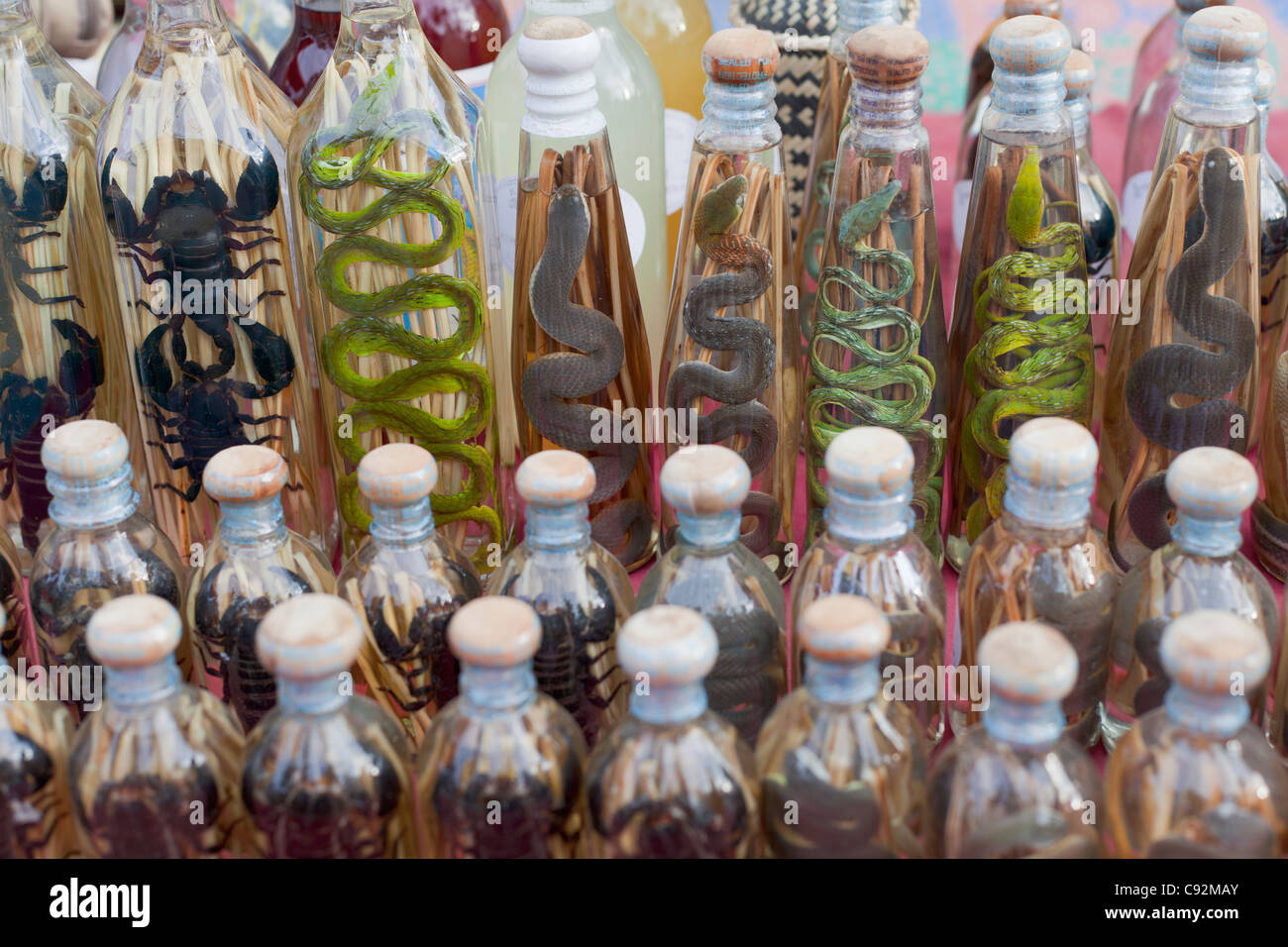 Laotian rum with snakes on display at a market stall, Laos - Stock Image