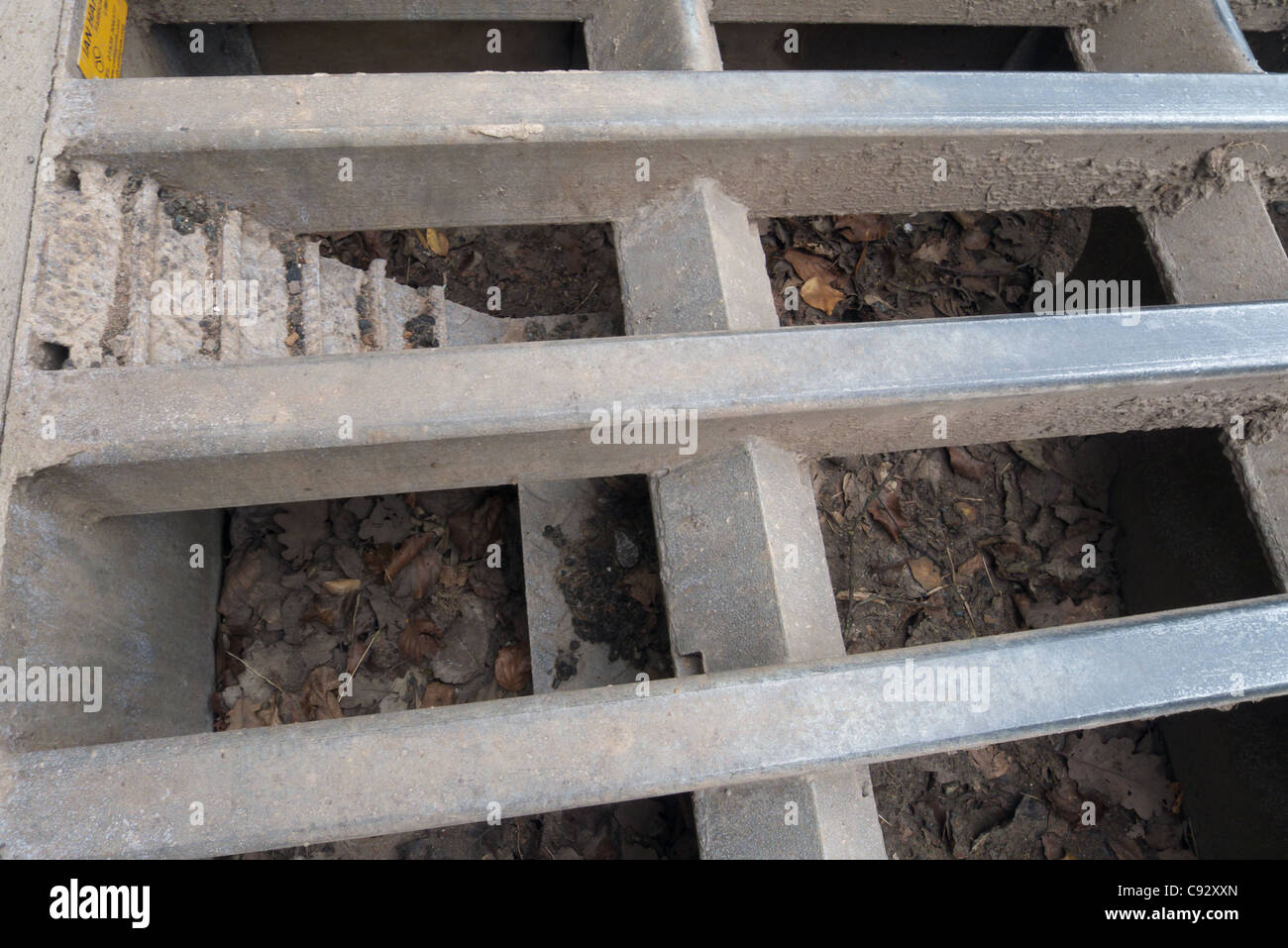 A hedgehog escape ladder in a cattle grid - Stock Image