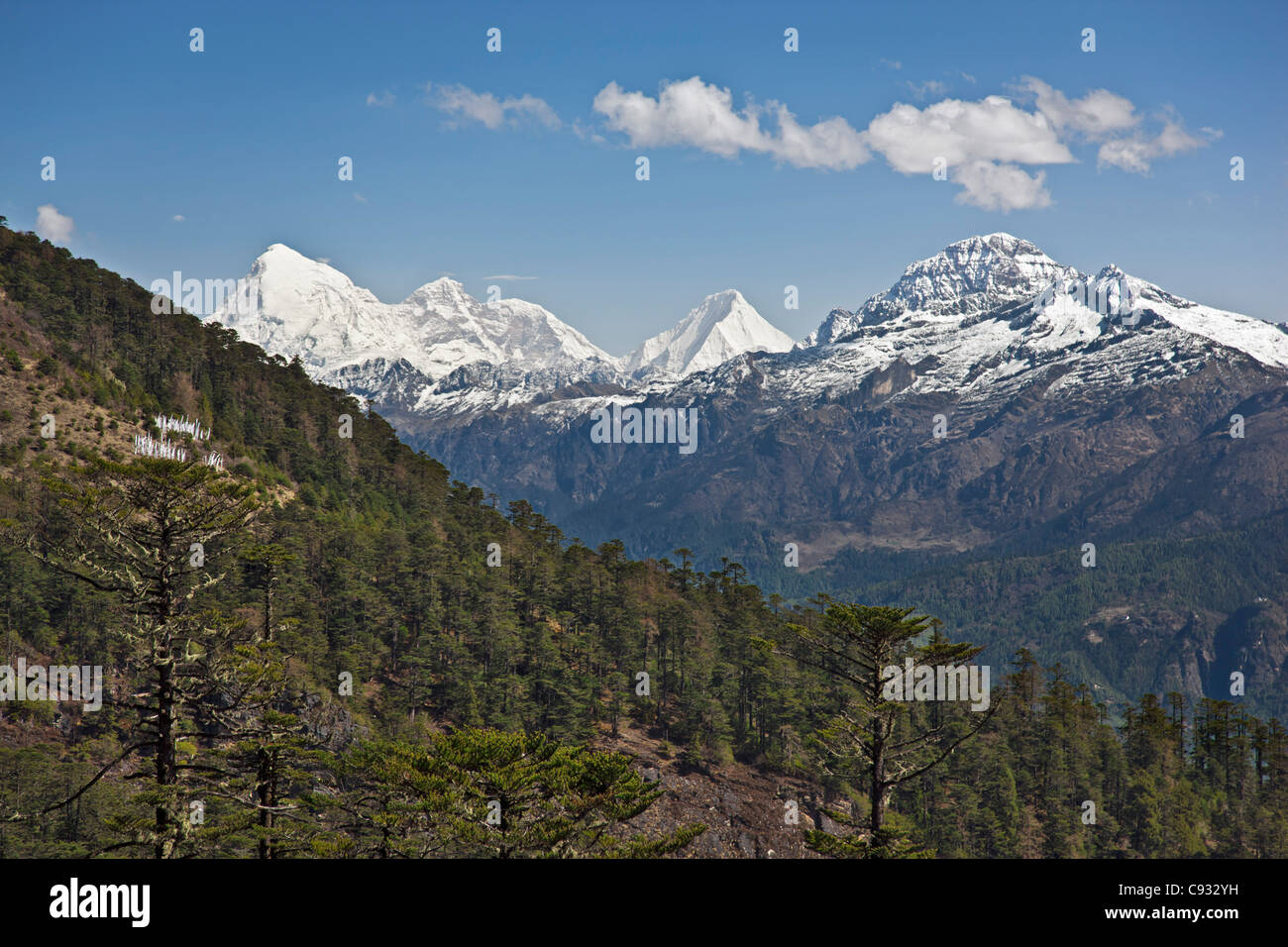 A superb view of snow-capped mountains from the Cheli La Pass, Bhutans highest motorable road. - Stock Image