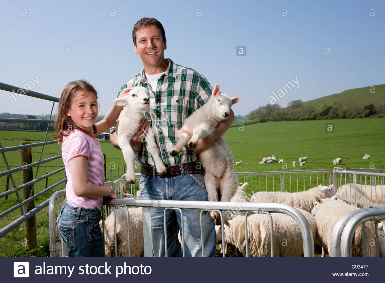 Portrait of shepherd and daughter with sheep in pasture - Stock Image