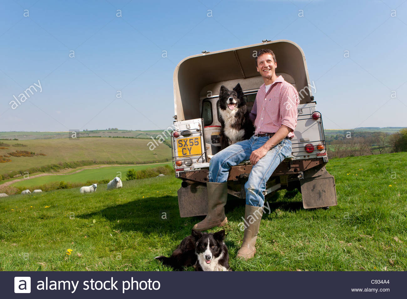 Portrait of shepherd with dog sitting on tailgate of truck Stock Photo