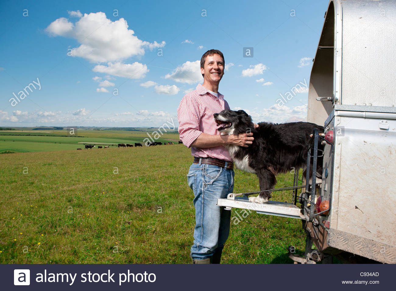 Portrait of smiling farmer petting dog on tailgate of truck in field - Stock Image