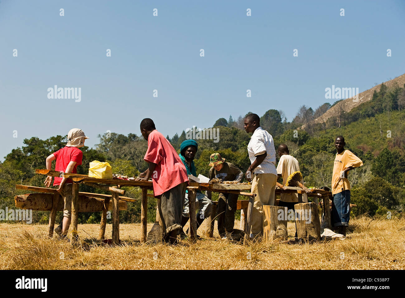Malawi, Zomba Plateau.  Local men sell semi-precious minerals and wild flowers at a stall near Chingwe's Hole. - Stock Image