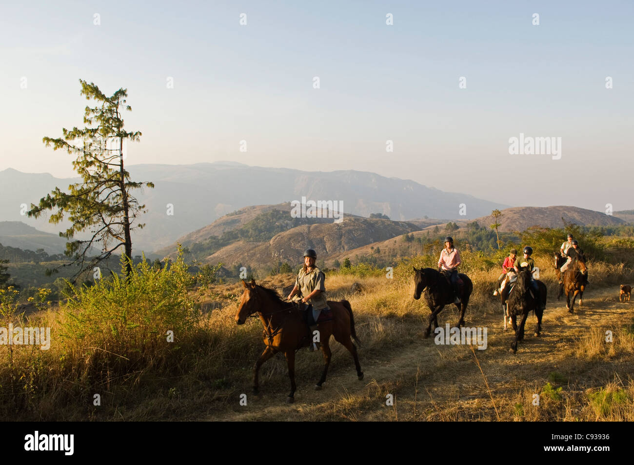 Malawi, Zomba Plateau.  A horse riding safari is a popular way to explore Zomba Plateau. - Stock Image