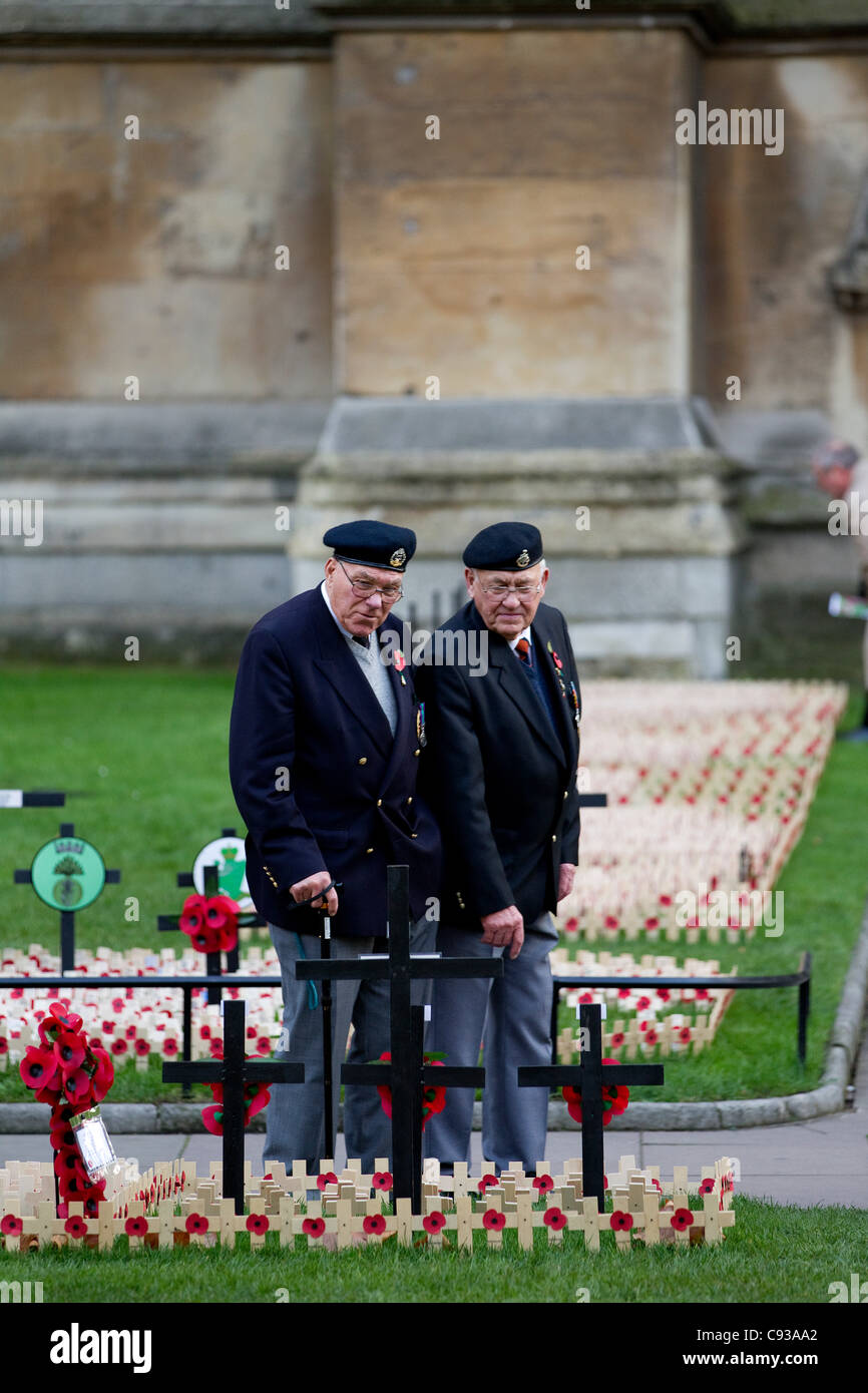 Westminster Abbey, London, UK. 10.11.2011 Ex-servicemen pay their respects at Westminster Abbey's Garden of - Stock Image