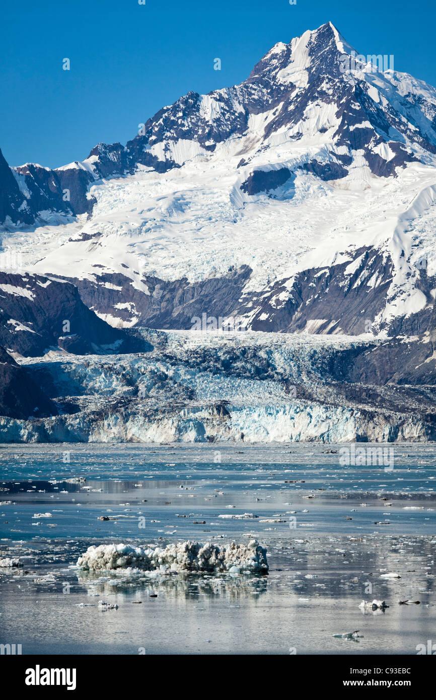 Johns Hopkins Glacier in Glacier Bay,Alaska - Stock Image