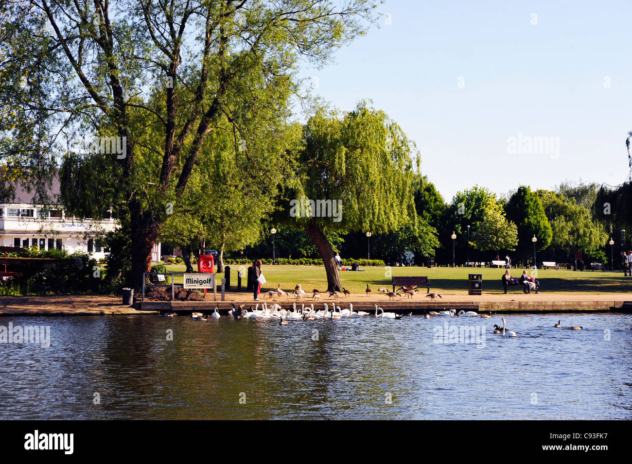 Stratford upon Avon. - Stock Image
