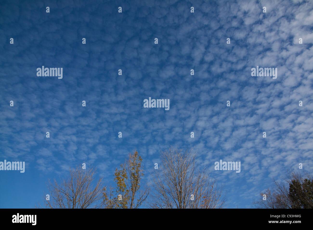 Altocumulus Mackerel sky USA - Stock Image