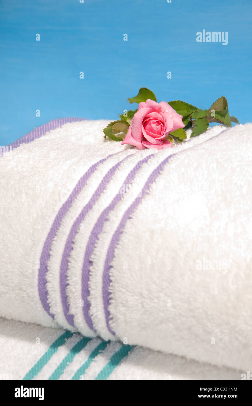 Clean bath towels ready to use, with a beautiful pink rose - Stock Image