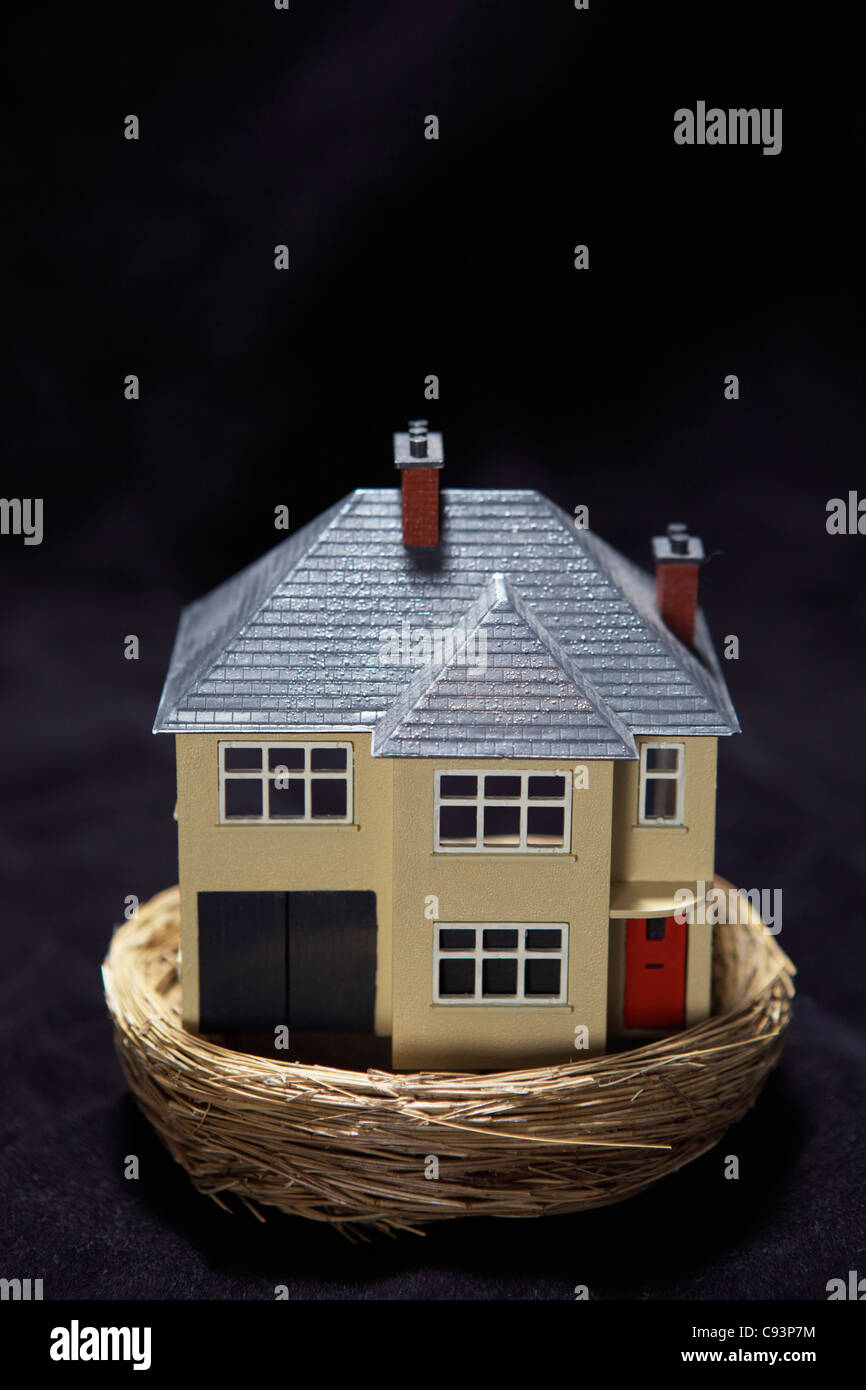 Model house in a basket Stock Photo