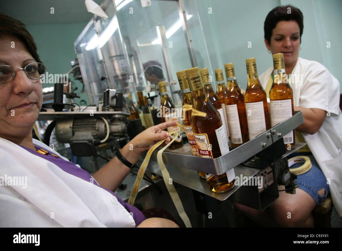 Workers stick labels at the bottles at the rum factory Fabrica de Bebidas Casa Garay in Pinar del Rio, Cuba. Stock Photo