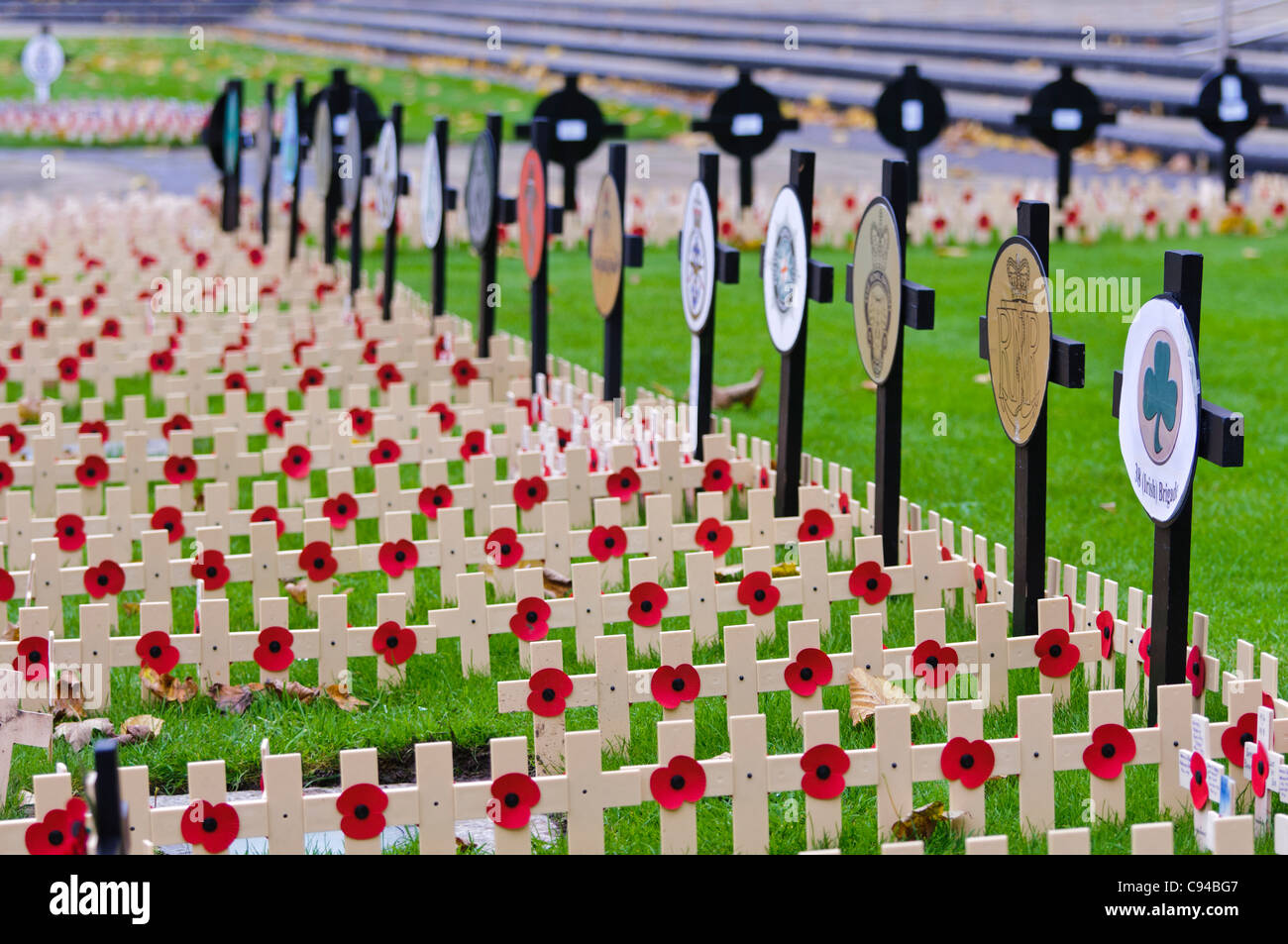 Wooden crosses with poppies in remembrance of servicemen and women killed in action. - Stock Image