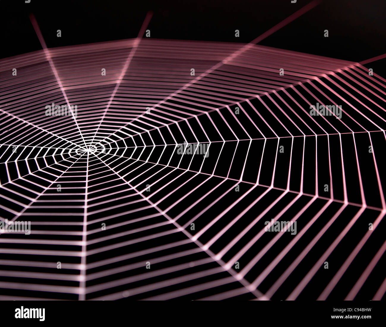 detail of a white painted spiderweb in dark back, red illuminated - Stock Image