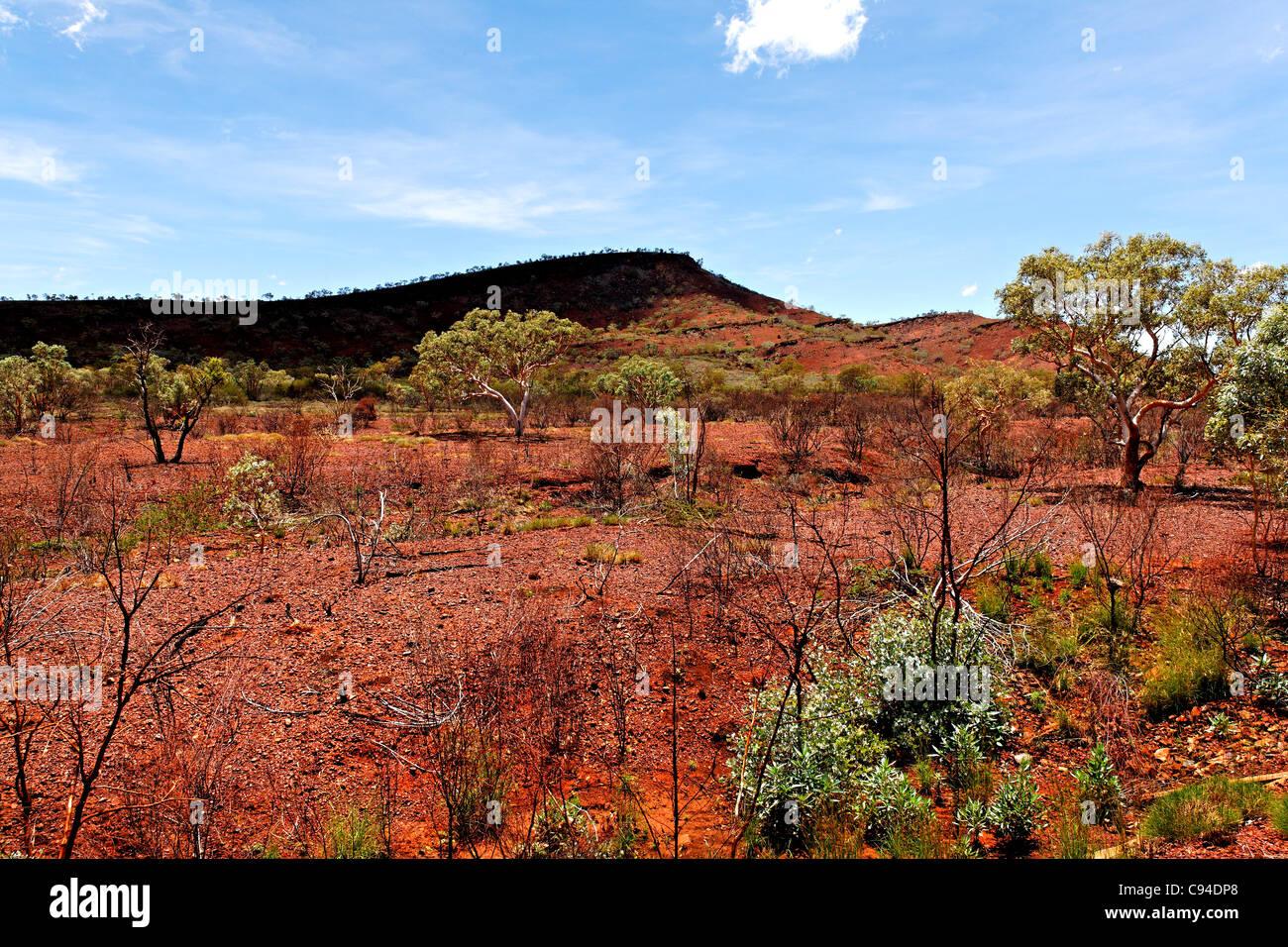 Australian outback landscape, Pilbara Western Australia - Stock Image