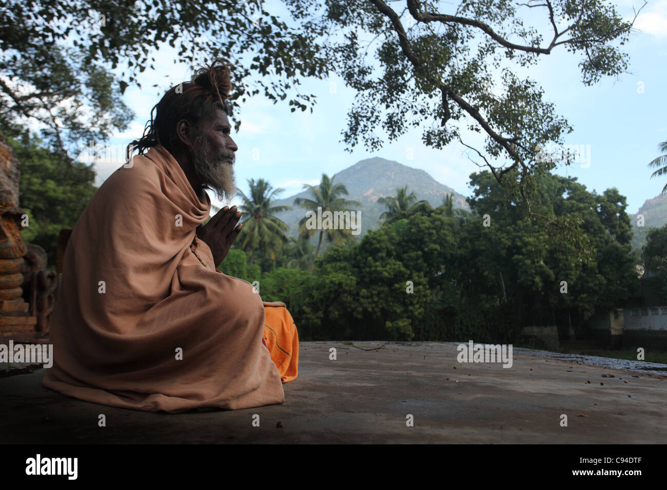 Sadhu sitting at a holy tree with statues of Hindu gods Tamil Nadu India - Stock Image
