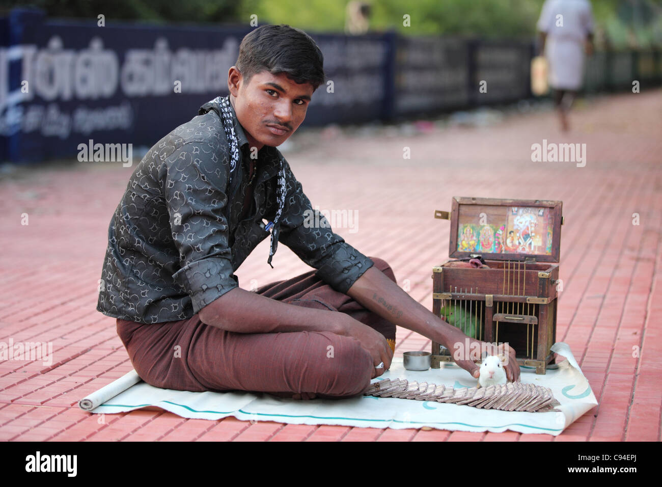 Fortune teller using a hamster or a parrot Tamil Nadu India - Stock Image