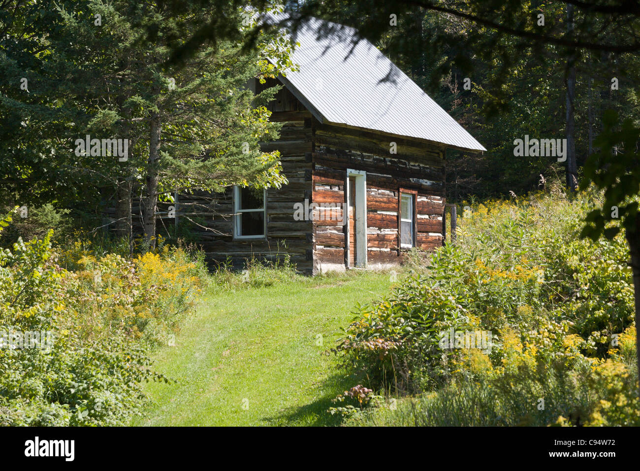 Old Log Cabin, new steel roof. A weathered old pioneer log cabin topped with a crisp silver steel roof is surrounded Stock Photo