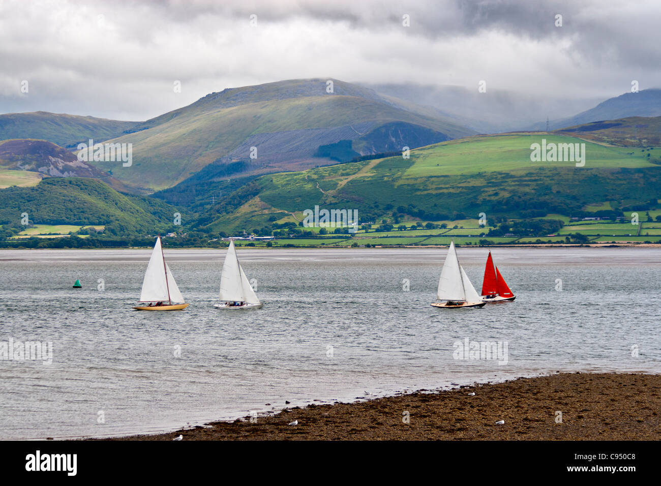 Sailboats in Anglesey, Wales - Stock Image