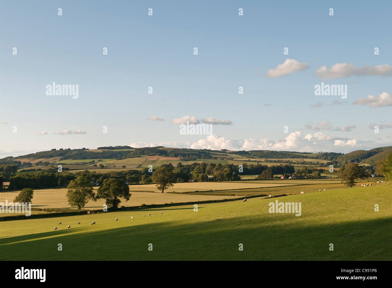 View from Herrock Hill on the Offa's Dyke Path, looking towards Knill and Presteigne - Stock Image