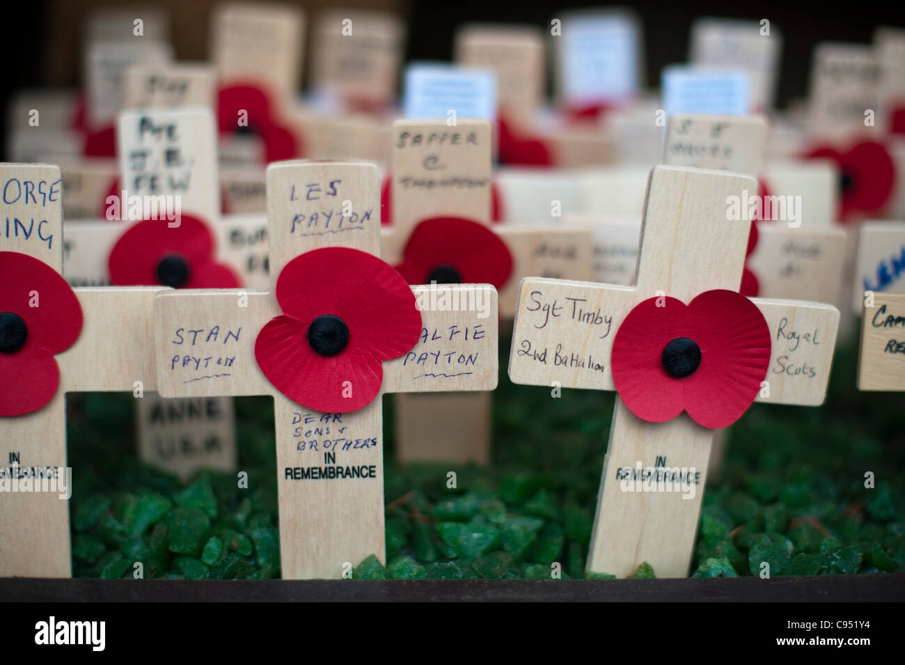 Remembrance day crosses and poppies close up - Stock Image