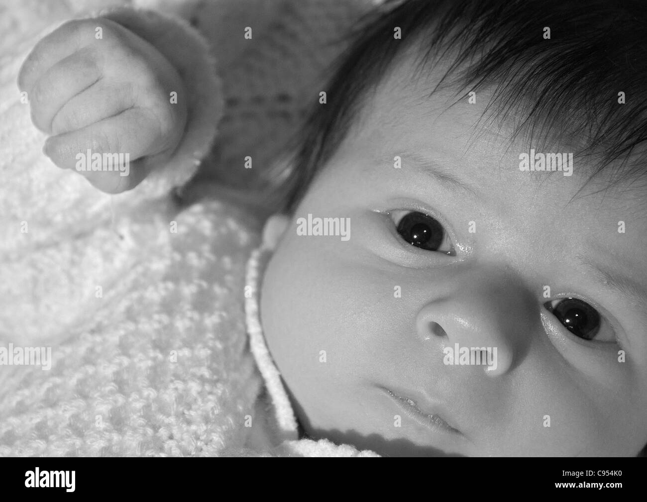 A wide awake, 5 week old baby. - Stock Image