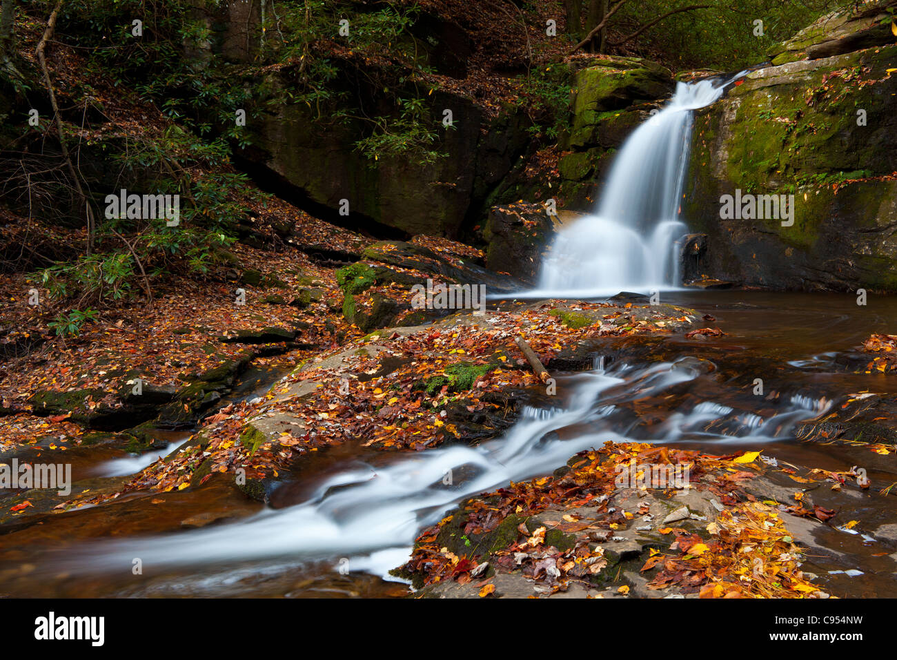 Dodd Creek Falls are located in the Raven Cliffs Wilderness area in north Georgia just north of Helen, GA.  They - Stock Image