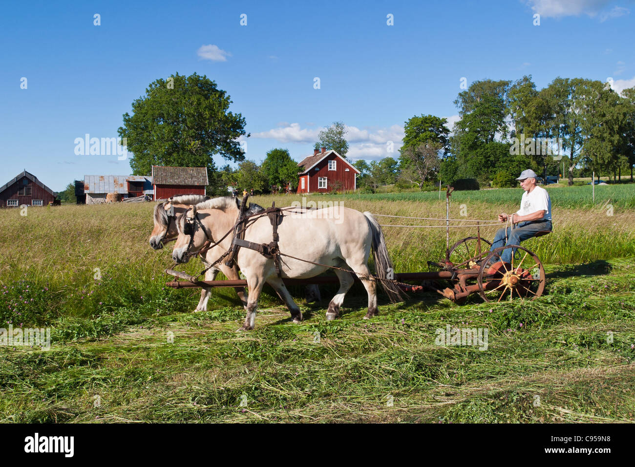 Horse Drawn Hay Mower Stock Photos & Horse Drawn Hay Mower
